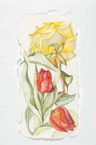 One rose, two tulips.