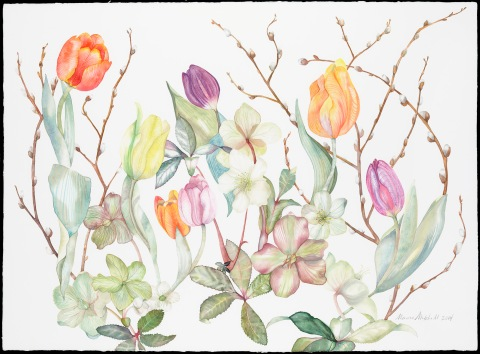 Hellebores and Tulips